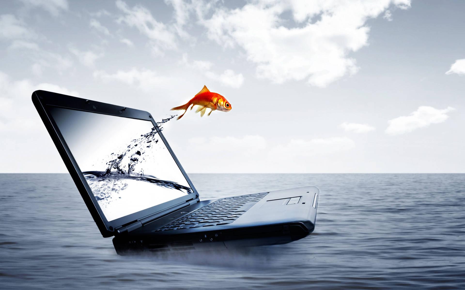 Вода самый ужасный враг ноутбука